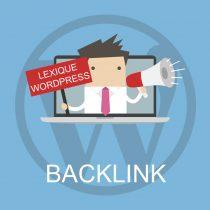 Lexique WordPress : Backlink