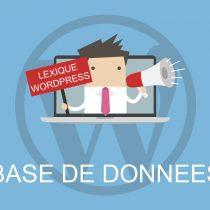 Lexique WordPress : Base de données